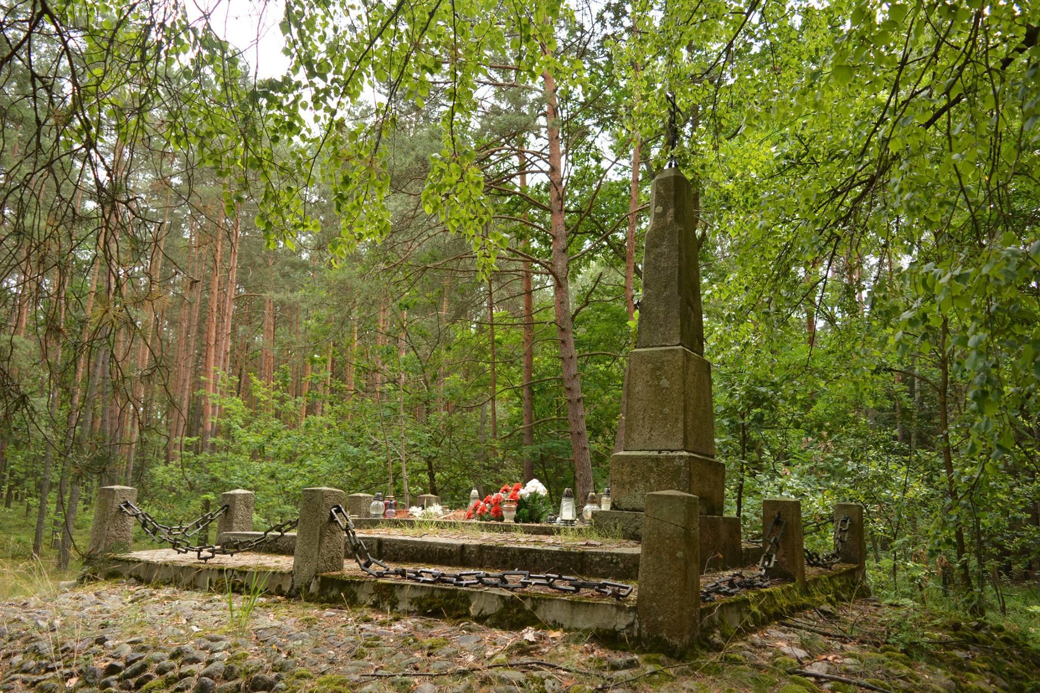 mogiła Powstańców Styczniowych w lesie pod Łucznicą, gmina Pilawa